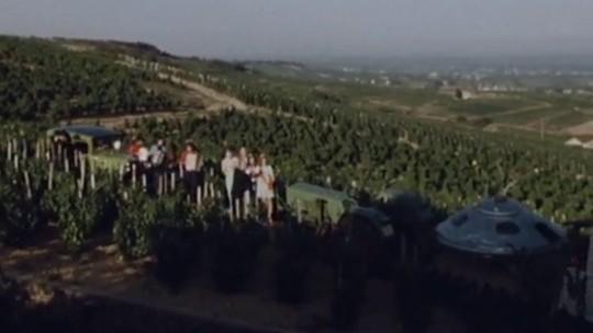 Beaujolais-1974