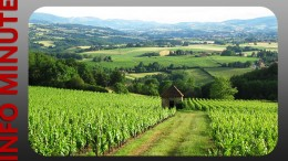 Geopark Beaujolais – Candidature validée