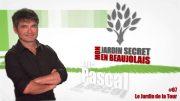 Mon Jardin Secret en Beaujolais #7 – Le Jardin de la Tour