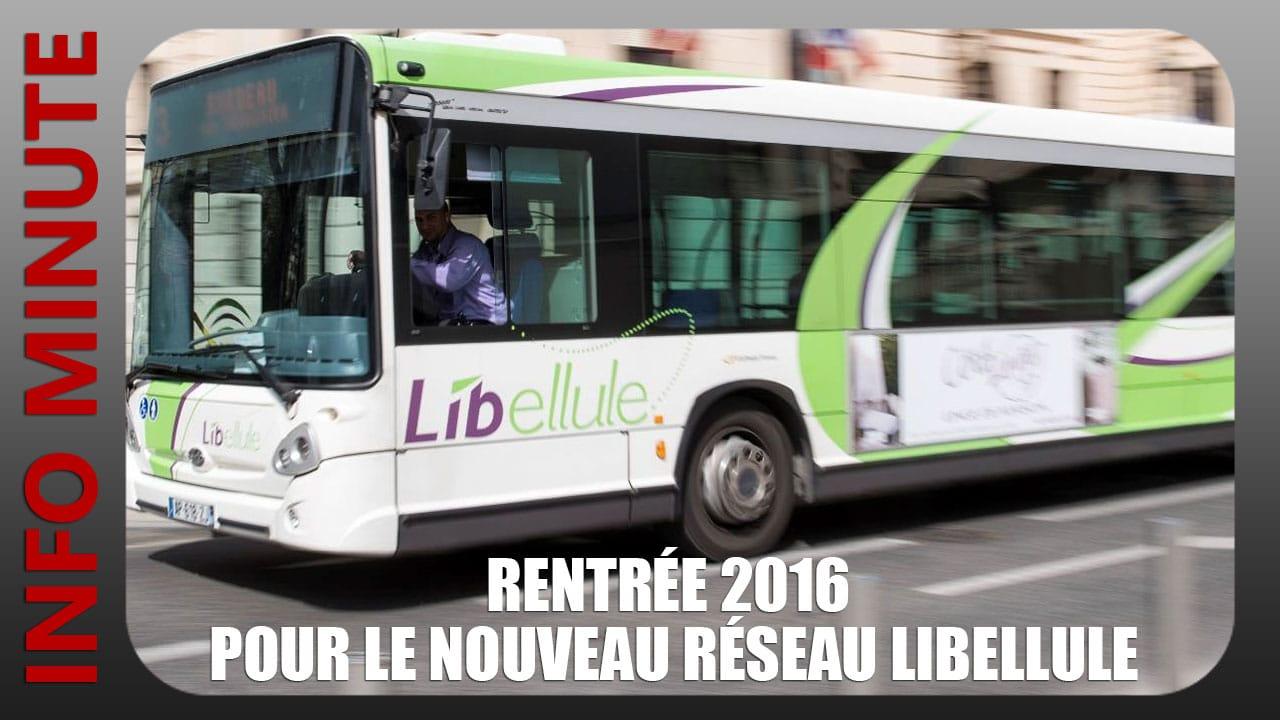 Rentrée 2016 pour le nouveau réseau Libellule