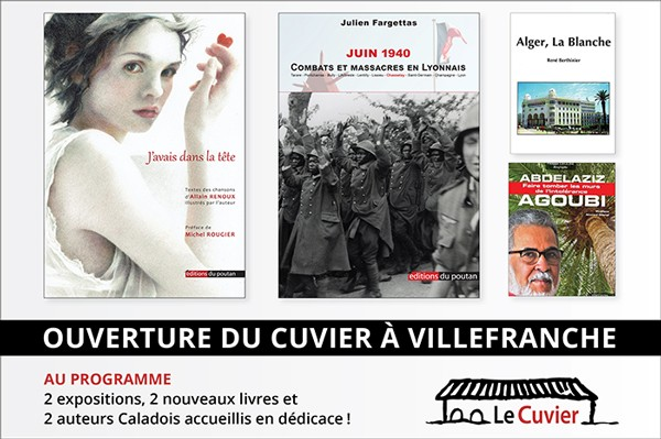 Cinéma Villefranche