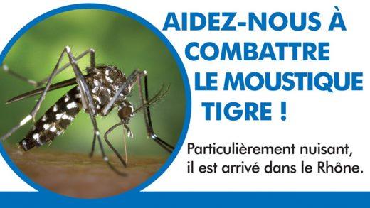 Le Moustique Tigre est arrivé dans le Rhône
