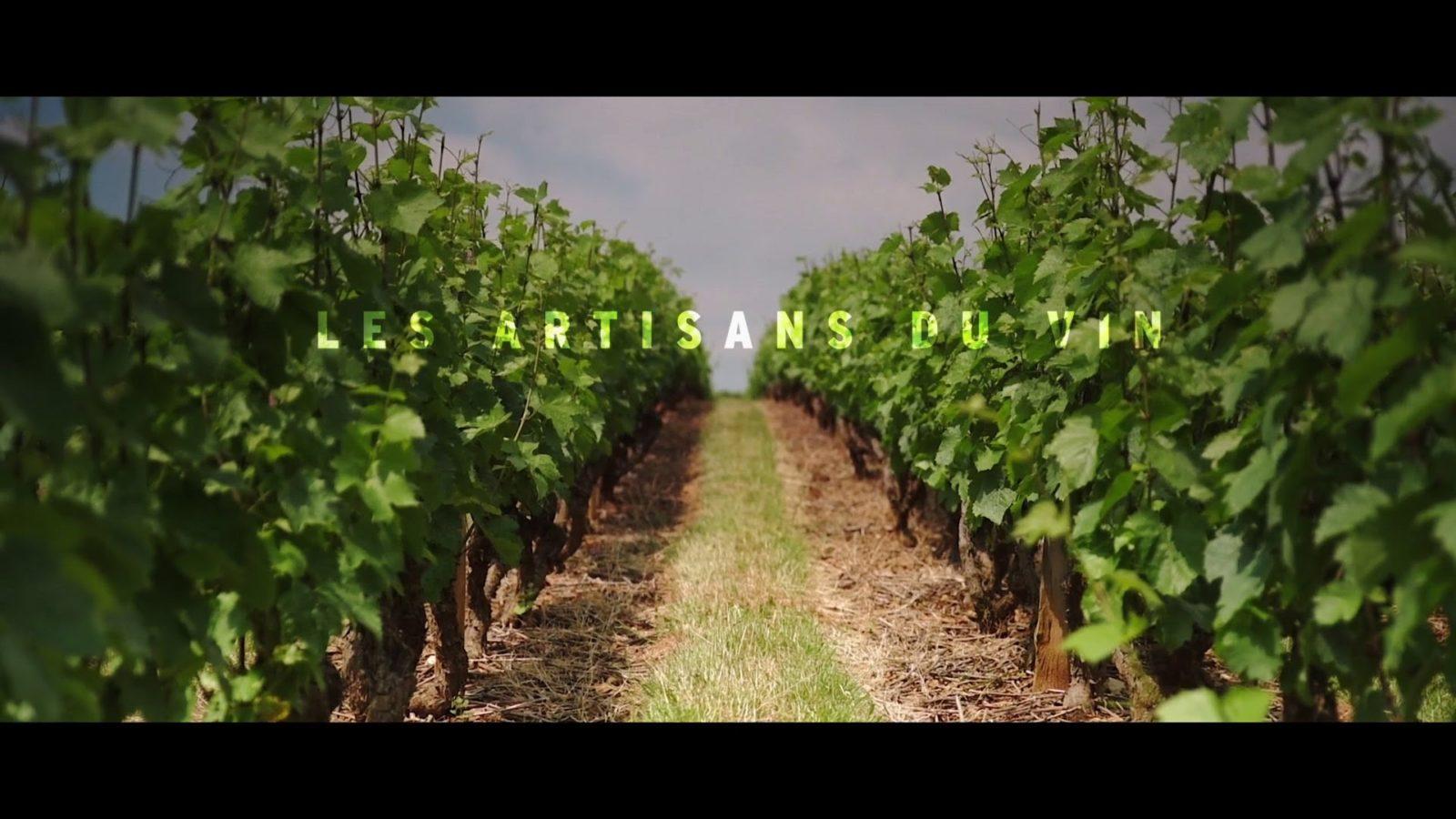 Beaujolais Nouveaux – Les artisans du vin