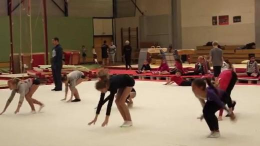 Gym - Fémina Gymnique - Présentation saison 2015