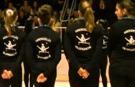 Gala de gymnastique artistique 2013 des Hirondelles de villefranche