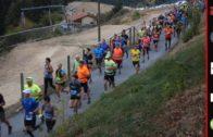 Trail – Le Fût d'Avenas 2017